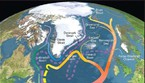 Rappresentazione grafica della Corrente atlantica meridionale (fonte: R. Curry, Woods Hole Oceanographic Institution/Science/USGCRP) (ANSA)